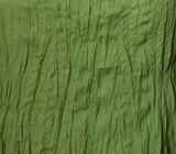camicia bottone cocco verde chiaro