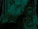 camicia bottone cocco verde scuro